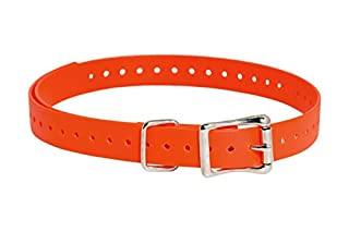 SportDOG Brand 3/4 Inch Collar Strap (B000J24TME) | Amazon price tracker / tracking, Amazon price history charts, Amazon price watches, Amazon price drop alerts