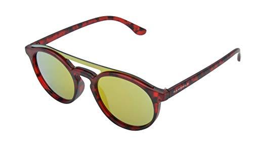 Gamswild Gafas de sol WM1221 GAMSSTYLE, gafas de moda, unisex, color verde, azul, rojo y marrón