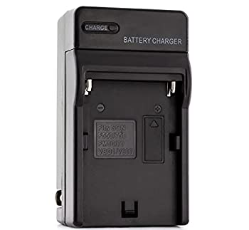 NP-FM50 Charger for Sony CCD-TRV308 CCD-TRV138 CCD-TRV328 DSLR-A350 DSLR-A100 DSLR-A200 DSR-PD170 DSR-PD150 HVR-Z5U HVR-Z1U MVC-CD400 and More with Foldable Plug
