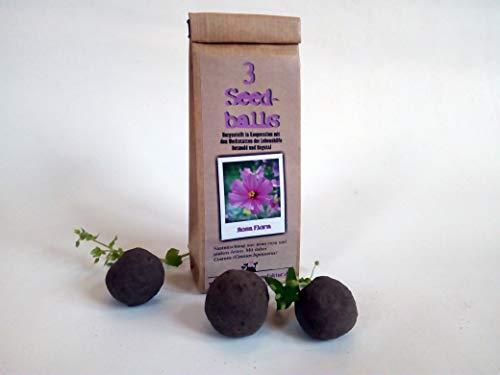Die Seedball-Manufaktur Seedballs Rosa Flora 3er, Natur mit rosafarbener blumenmischung
