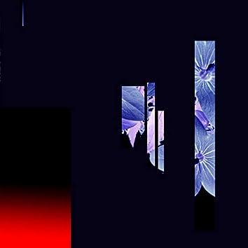 Lavender / Why Isn't Love Enough?