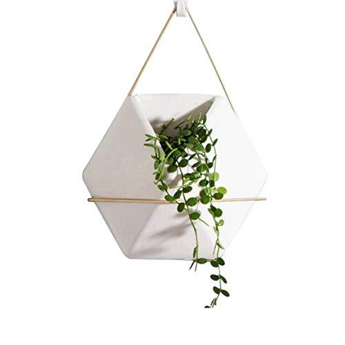MRFX Succulent Pots De Fleurs Décorations D'intérieur Nordic Wind Mur Pendaison D'or Cadre De Fleur En Fer Forgé Plante Verte Charnue Pots De Fleurs Charnière Décorations D'intérieur Creative Simple P