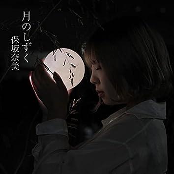 Tukinoshizuku (Cover)