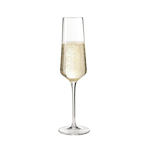 Leonardo Puccini Sektglas, 6-er Set, 280 ml, spülmaschinenfest, Teqton-Kristallglas, 069550