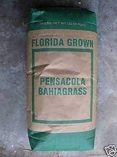 seed ranch florida