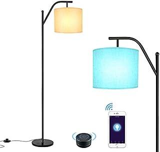 چراغ طبقه ، چراغ هوشمند Wellwerks ، - چراغ قوس صنعتی ایستاده کلاسیک با سایه لامپ ، چراغ طبقه مدرن برای اتاق خواب ، اتاق نشیمن ، اتاق مطالعه