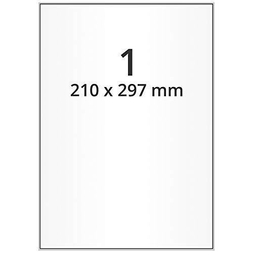 Labelident wetterfeste Folien-Etiketten - 210 x 297 mm - 100 PET Polyester Etiketten transparent matt, selbstklebend, 100 Blatt DIN A4 Bogen
