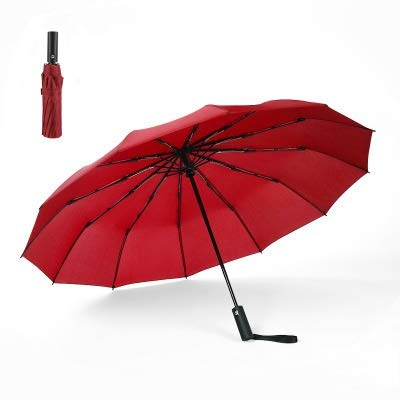 DXFWZQ 12 Hits de Huesos Completos Automáticos Automáticos Menores y Mujeres General Paraguas Paraguas Smallilla Simple Reforzado Paraguas, Red