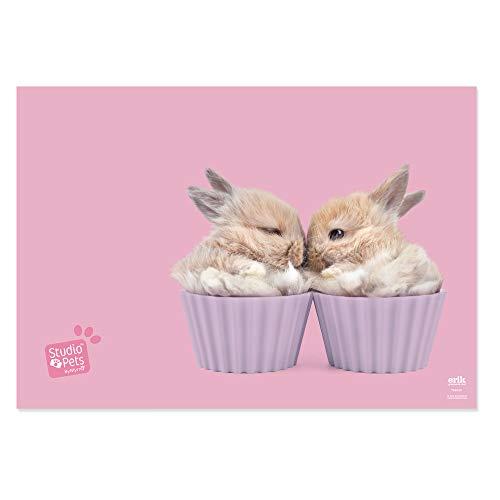 Erik  Schreibtischunterlage / Schreibtischmatte Studio Pets Rabbits