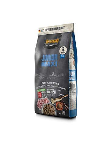Belcando Junior Maxi Hundefutter | Trockenfutter für Junghunde großer Rassen | Alleinfuttermittel für Junghunde ab 4 Monaten (1 kg neu)