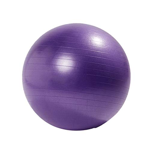 900g Purple Not Included Accessory/ï/¼/‰ LIOOBO Sport Yoga Ball Exercise Ball for Women Men Balance Stability Workout Fitness Anti Burst 65cm Thickened