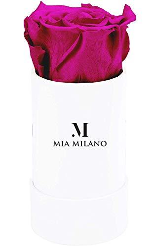Mia Milano Rosenbox mit Infinity Rosen I 3 Jahre haltbar I Konservierte Blumen in einer Dose (Small (ohne Band), S Weiß - Hot Pink)