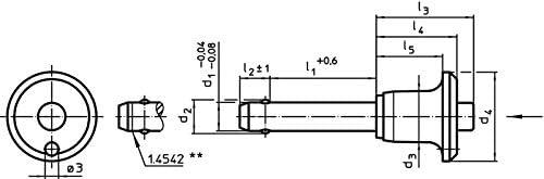 l1=60 mm//Rostfreier Stahl 1.4305 HALDER 22340.0272 Kugelsperrbolzen schwarz d1=12 mm