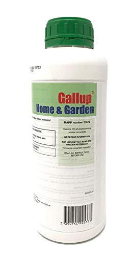 Gallup Home and Garden Strong We...