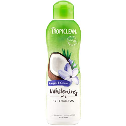 TropiClean Awapuhi & Coconut Whitening Shampoo for Pets, 20oz - Whitens and Brightens All Coats, Made in the USA