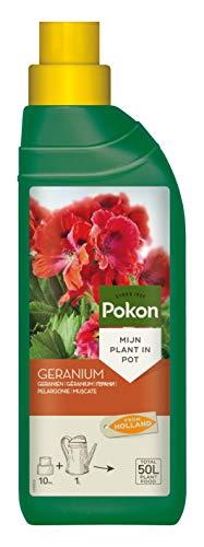 Pokon Geranien Flüssigdünger, Geranium Dünger für prachtvolle Blüten auf Balkon und Terrasse, 500ml