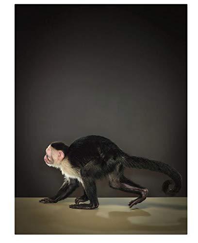 300 Piezas,Adulto Puzzle,de madera Rompecabezas,Juguetes Educativos Niño Aprendizaje temprano Juguete Regalo,Retrato de mono mono capuchino