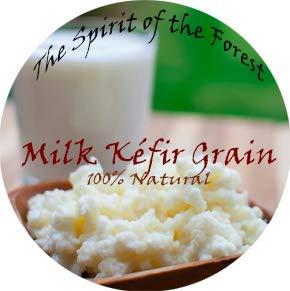 Milk Kefir Lebanese Grains - Fresh Live Active Probiotic Starter Cultures (1 TBSP)