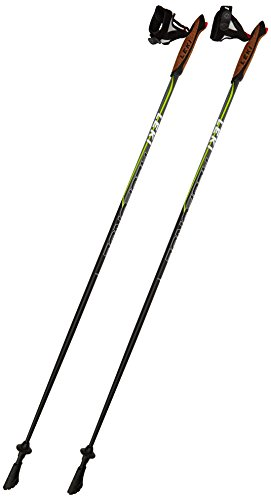 nordic walking stoecke leki carbon