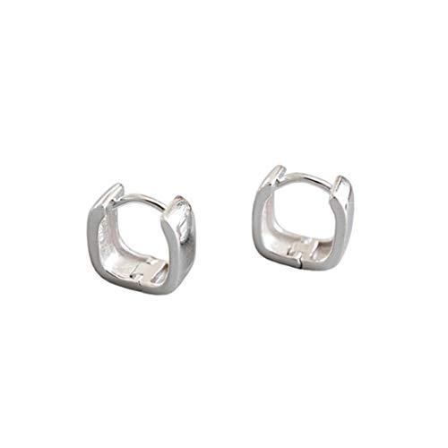 ZSDFW Pendientes de plata con pendientes de tuerca y pendientes de aro para regalo