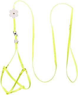 D-4PET Bird Harness - Adjustable Bird Training Leash Portable Small Pets Walking Lead Rope Ultralight Flying Harness for Parrot Cat