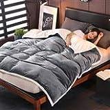 Doppelte Decke Quilt Winter Lamm Kaschmir Dicke warme korallenrote Fleece Decke Flanell Quilt Bett (Farbe : H, größe : 150 * 200cm)