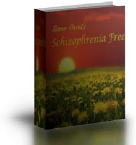 Schizophrenia: How to Free Yourself from Schizophrenia (English Edition)