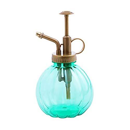Hemore Mini Plant Mister - Botella de agua decorativa de cristal con bomba superior, pequeña regadera, para plantas en maceta, 1 unidad, color verde