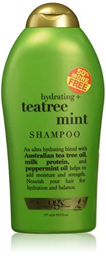 (OGX) Organix Shampoo Tea Tree Mint 19.5oz Bonus Hydrating (Organix Tea Tree Mint Shampoo For Dandruff)