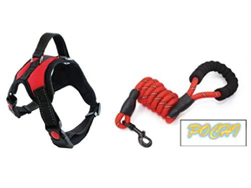 POCHI Super Premium Hundeleine und Geschirr Set, mittelgroße bis mittelgroße Hunde (rot)