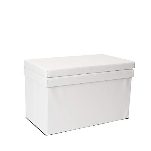 Dormify Collapsible Storage Ottoman Bench with Seat Back  Dorm Room Decor White