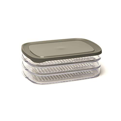 Amuse, 23 x 16 x 8 cm Frischhaltedose/Stapelbox mit 3 Abteilungen, als Aufbewahrungsbox mit Deckel oder Transportbox für Aufschnitt verwendbar, rechteckig, Kunststoff, grau