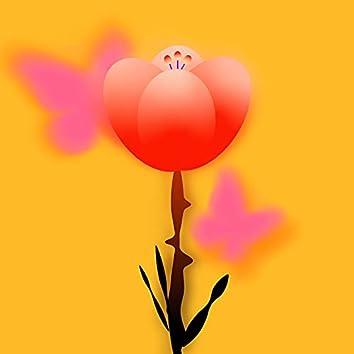 奇丽的花朵