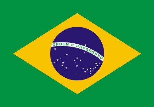 Michael & Rene Pflüger Barmstedt 8,4 x 5,4 cm Autoaufkleber Fahne von Brasilien Brasil Brazil Sticker Aufkleber fürs Auto Motorrad Handy Laptop