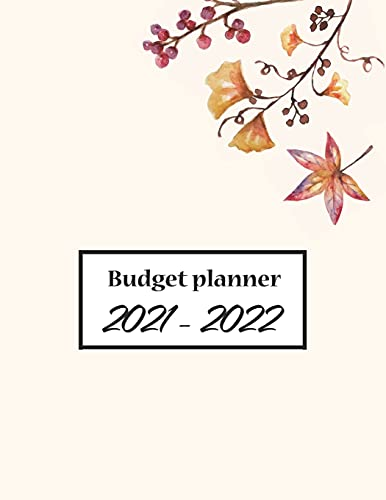 Budget Planner 2021-2022: Monthly Budgeting Journal, Finance Planner Tracking Your Bill, Paycheck For Men, Women With Marble Cover, 8.5 x 11 120 Pages