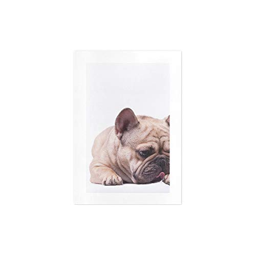 Personalized Canvas Wall Art Adorable Fawn Brown French Bulldog Lying Canvas Paintings Wall Art Minimalist Canvas Wall Decor Art Dorm Room Decor Office Apartment Wall Decor|unframed|7x10inch