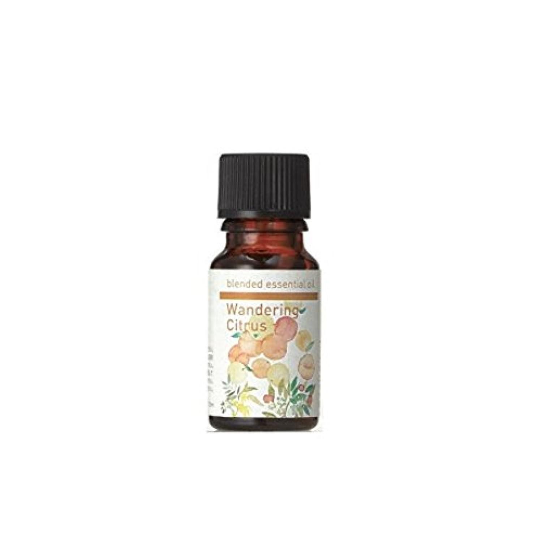 生活の木 ブレンドエッセンシャルオイル ワンダリングシトラス [30ml] エッセンシャルオイル/精油