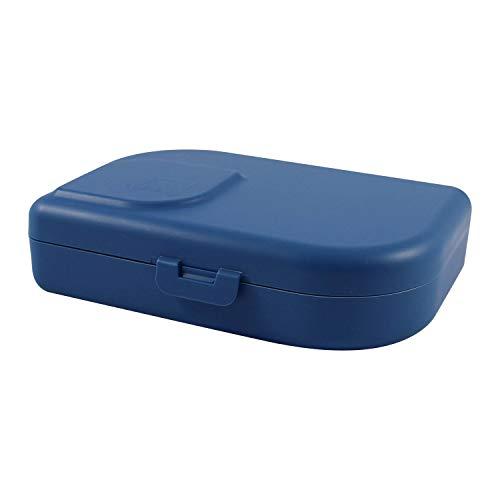 ajaa! Bio Brotdose - Lunch-Box aus nachwachsenden Rohstoffen ohne Melamin, ohne Weichmacher wie BPA, plastikfrei (Blue)