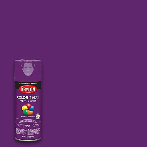 Krylon K05536007 COLORmaxx Spray Paint and Primer for Indoor/Outdoor Use, Gloss Rich Plum