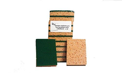 10 Eponges végétales Pro avec tampon récurant grattant vert 120 x 90 x 25
