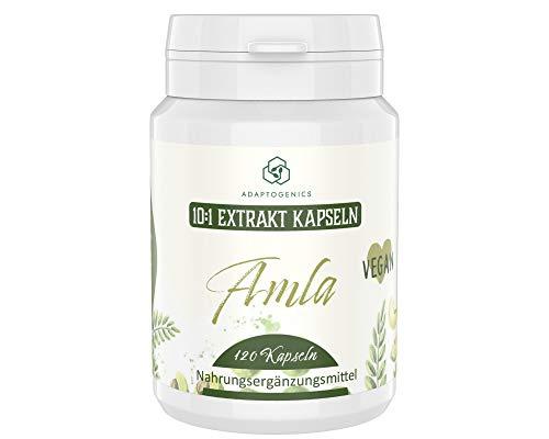 Amalaki Beere (Phyllanthus emblica) • 4 Monate Vorrat • Hochdosiert: 10:1 Extrakt • ohne Zusätze • Extrakt aus der Amla- Frucht • 120 Kapseln je 380 mg