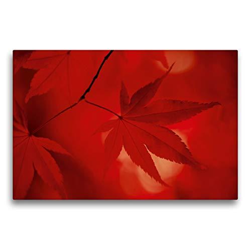 Premium Textil-Leinwand 75 x 50 cm Quer-Format Rotes Ahornblatt, Leinwanddruck von bild-erzaehler