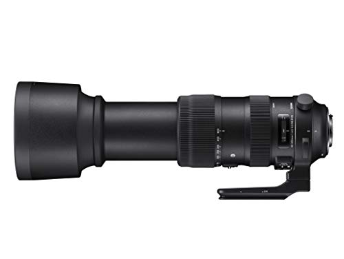 Sports60-600mmF4.5-6.3DGOSHSMCanonEFマウント