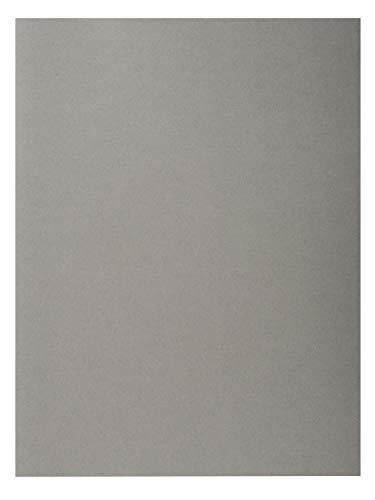 Exacompta 420009E - Lote de 100 Subcarpetas Forever® 180, Color Gris