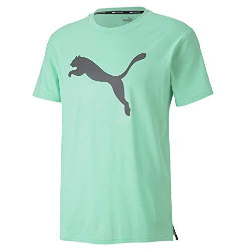 PUMA Herren Cat Tee T-Shirt, Green Glimmer Heather, XL