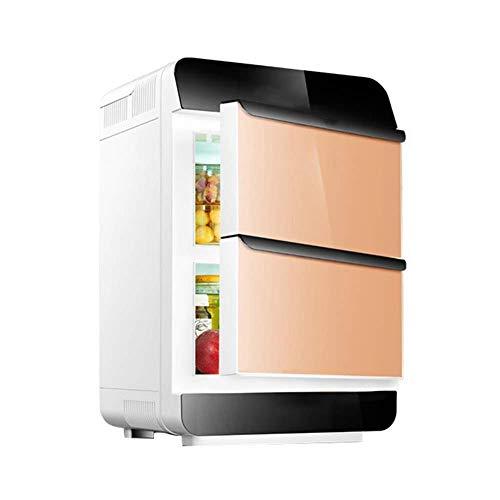 wangt autokoelkast 28 l dual-core koelkast elektrische DC/AC-hete of koude koelkast