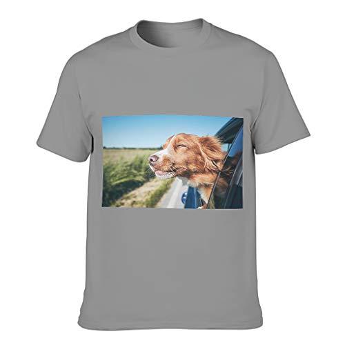 Camiseta de algodón para hombre con diseño de perro en la ventana del coche, cuello redondo Gris oscuro. M