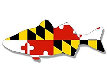 MAGNET ROCKFISH Shaped MARYLAND Flag Magnet(fish decal baltimore) Size: 3 x 6 inch