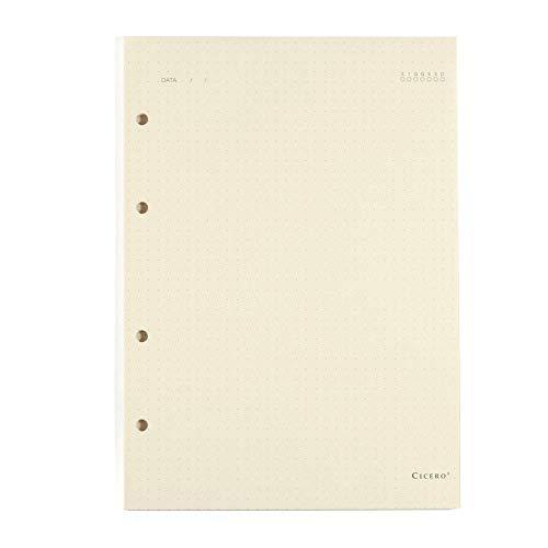 Refil Criativo Argolado, Branco, Pontado, 40 fls, Papel Pólen 80g/m², Tamanho Grande (17x24)