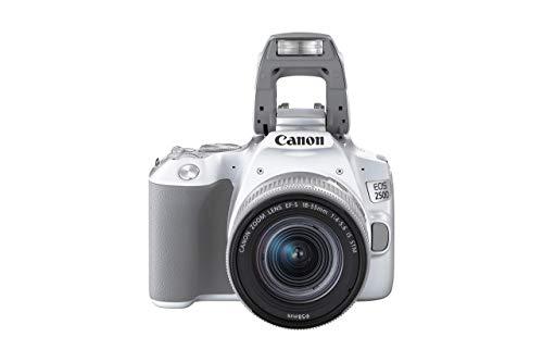 Canon EOS 250D Digitalkamera - mit Objektiv EF-S 18-55mm F4-5.6 IS STM (24, 1 Megapixel, 7, 7 cm (3 Zoll) Vari-Angle Display, APS-C-Sensor, 4K, Full-HD, DIGIC 8, WLAN, Bluetooth), weiß/silber
